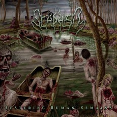 Festering Human Remains mp3 Album by Scaphism