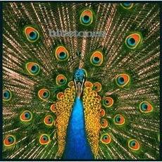 Expecting To Fly (Deluxe Edition) mp3 Album by The Bluetones