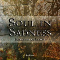 Hier Und Am Leben mp3 Album by Soul In Sadness