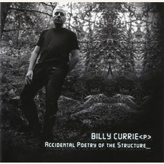 Accidental Poetry Of The Structure mp3 Album by Billy Currie