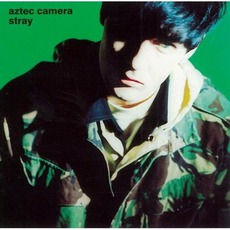 Stray by Aztec Camera