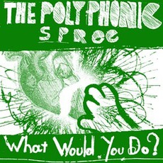 What Would You Do? mp3 Single by The Polyphonic Spree