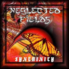 Synthinity mp3 Album by Neglected Fields