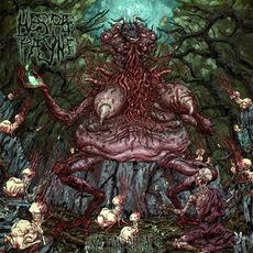 Unclean Rituals mp3 Album by Hesper Payne
