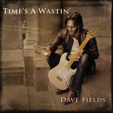 Time's A Wastin' mp3 Album by Dave Fields