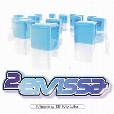 Meaning Of My Life mp3 Single by 2 Eivissa