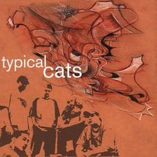 Typical Cats mp3 Album by Typical Cats