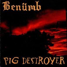 Benumb / Pig Destroyer mp3 Compilation by Various Artists