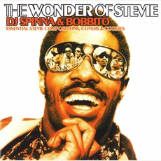 The Wonder Of Stevie