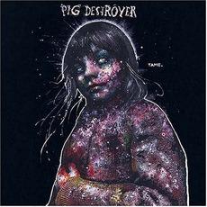 Painter Of Dead Girls mp3 Artist Compilation by Pig Destroyer