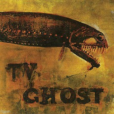 Cold Fish mp3 Album by TV Ghost