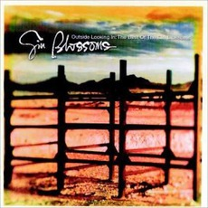 Outside Looking In: The Best Of The Gin Blossoms mp3 Artist Compilation by Gin Blossoms