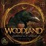 Seasons In Elfland: Shadows