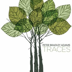 Traces mp3 Album by Peter Bradley Adams
