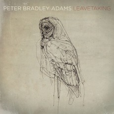 Leavetaking mp3 Album by Peter Bradley Adams