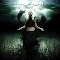 Suspended In Time mp3 Album by Destruction Of A Rose