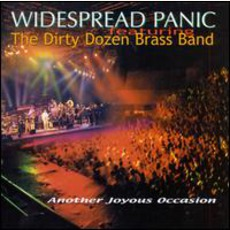 Another Joyous Occasion mp3 Live by Widespread Panic