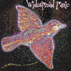 'Til The Medicine Takes mp3 Album by Widespread Panic