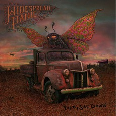 Dirty Side Down mp3 Album by Widespread Panic