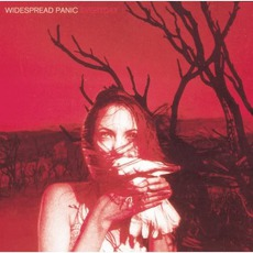 Everyday mp3 Album by Widespread Panic