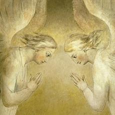 A VIsion In Blakelight mp3 Album by John Zorn