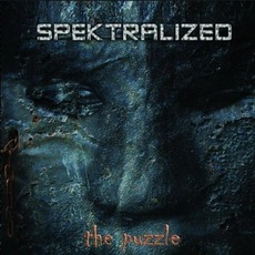 The Puzzle mp3 Album by Spektralized