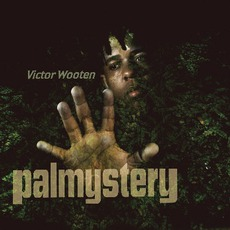 Palmystery mp3 Album by Victor Wooten