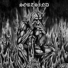 Vanvid mp3 Artist Compilation by Sortsind
