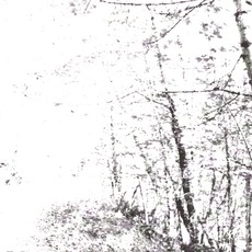 The White mp3 Album by Agalloch