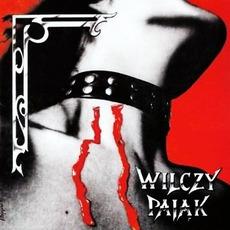 Wilczy Pajak by Wolf Spider