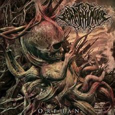 Orphan mp3 Album by The Seraphim Veil