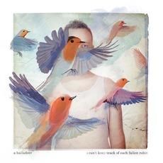 I Can't Keep Track Of Each Fallen Robin by A Balladeer