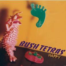 Happy mp3 Album by Bush Tetras