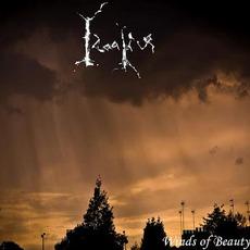 Winds Of Beauty mp3 Album by Idaaliur