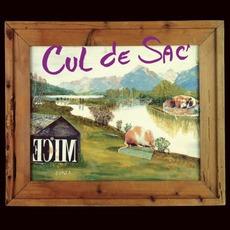 Ecim (Re-Issue) mp3 Album by Cul De Sac