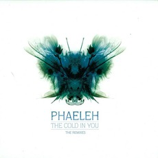 The Cold In You (The Remixes) mp3 Remix by Phaeleh