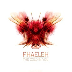 The Cold In You mp3 Album by Phaeleh