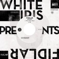 DIYDUI mp3 Album by FIDLAR
