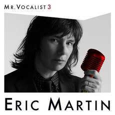 Mr. Vocalist 3
