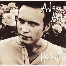 Wonderful mp3 Album by Adam Ant