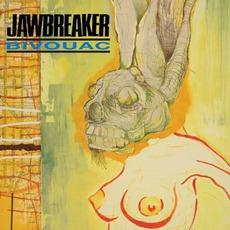 Bivouac (20th Anniversary Edition)