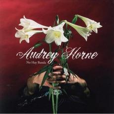 No Hay Banda mp3 Album by Audrey Horne