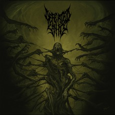 Passages Into Deformity mp3 Album by Defeated Sanity