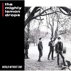 World Without End (Re-Issue) mp3 Album by The Mighty Lemon Drops