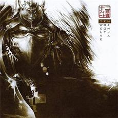 New Dawn mp3 Album by Twelve Foot Ninja