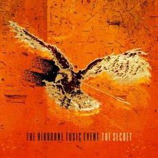 The Secret by The Airborne Toxic Event
