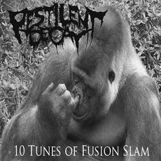 10 Tunes Of Fusion Slam