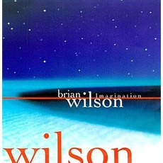 Imagination by Brian Wilson