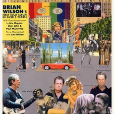 Gettin' In Over My Head by Brian Wilson