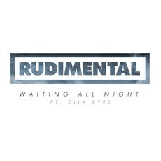 Waiting All Night mp3 Album by Rudimental